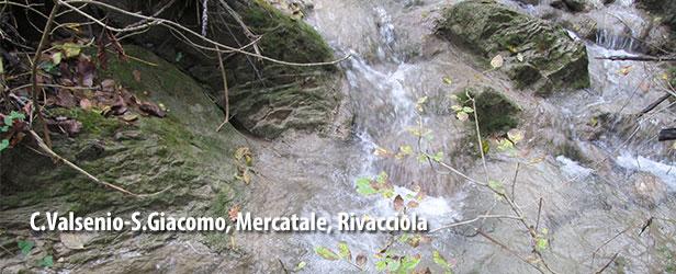 C.Valsenio-S.Giacomo,Mercatale,Rivacciola-2